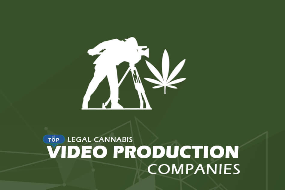 Top Legal Cannabis Video Production Companies